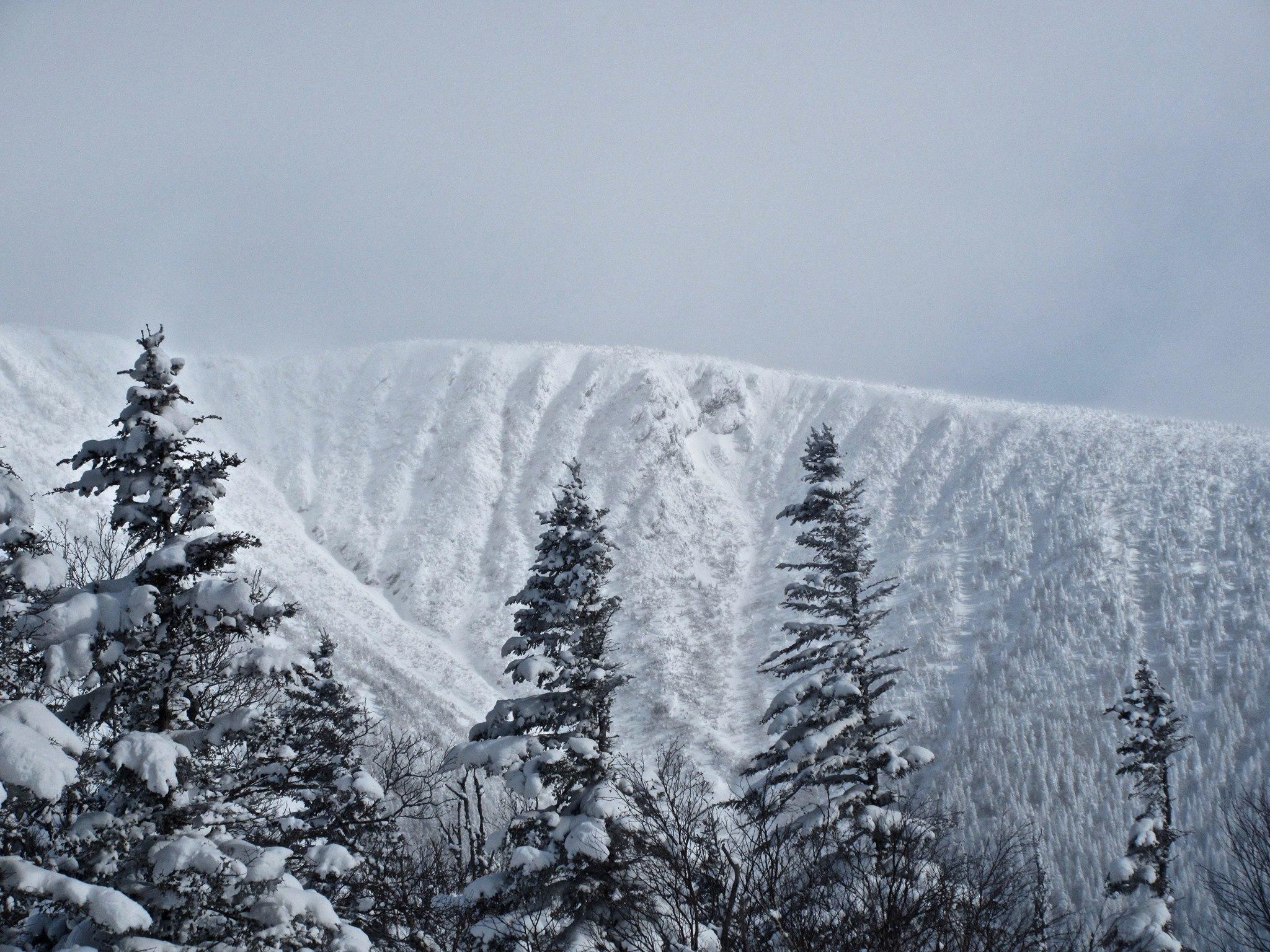 Vu depuis le Col de Craggy