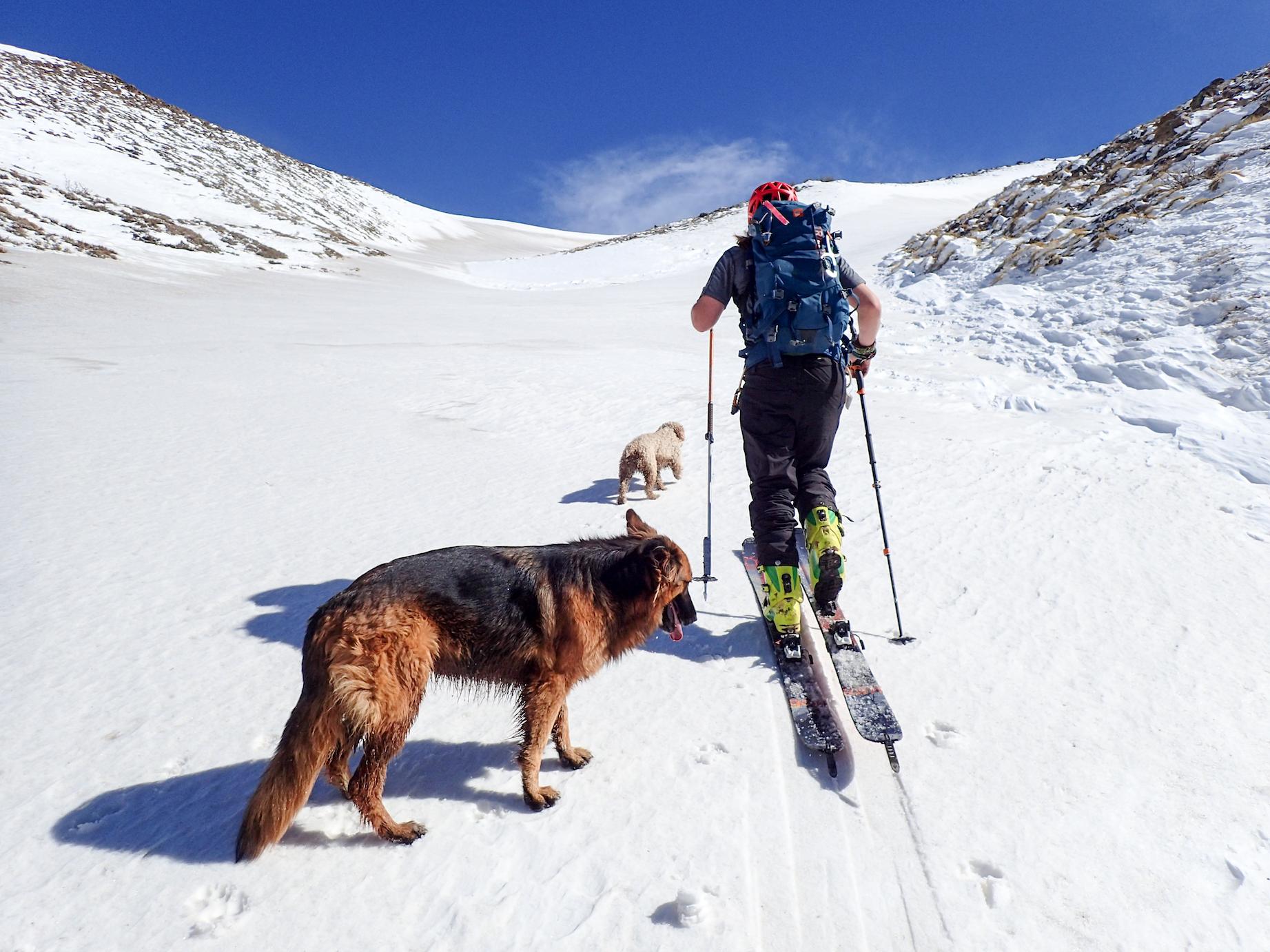 Petite ligne de ski en bonne compagnie